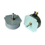 PM Series Stepper Motor