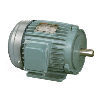IE3 Premium Efficiency Motors