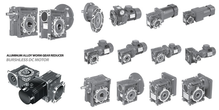 Hollow shaft worm gear reducer in rebeck motors manufacturers for Hollow shaft worm gear motor