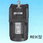 REIK Single Phase Induction Motor