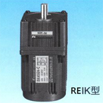 REIK 3 Phase Induction Motor
