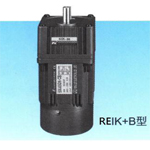 REIKB Single Phase Induction Motor