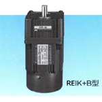REIKB 3 Phase Induction Motor