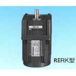 RERK Induction Motor